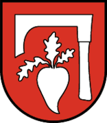 Wappen at fuegen