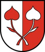 Kössen coat of arms